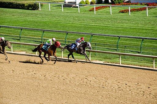 Kentucky, Louisville, Horse Racing, Horses, Racecourse