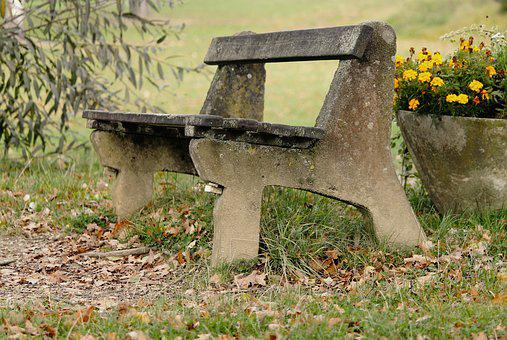 Tranquility Base, Wooden Bench, Bank, Autumn, Forest