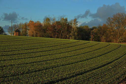 Chapel, Fall, Furrow, Grass, Field, Clouds, Landscape