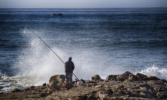 Fishing, Fish, Nature, Water, Sea, Fisherman, Sport