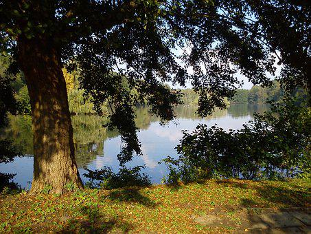 Water, Climatically, Landscape, Nature, Pond, Lake