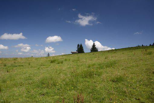 Meadow, Landscape, Nature, Sky, Blue, Green, Clouds