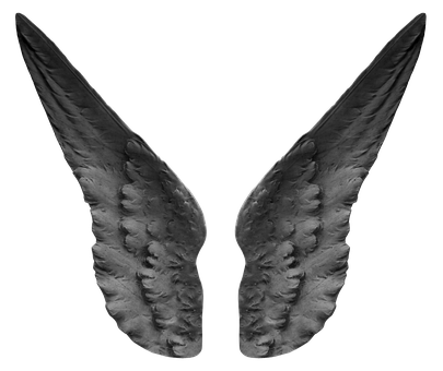 Wing, Angel, Fairytale, Mystical, Feather, Female