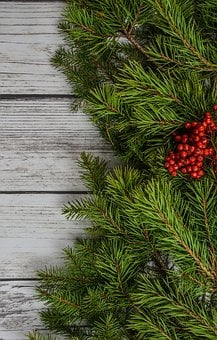 Background, Backdrop, Christmas, Decoration, Pine, Xmas
