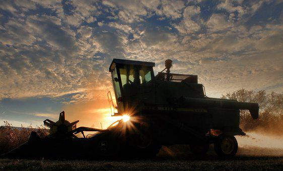 Combine, Soybean Harvest, Sunset, Agriculture, Soybean