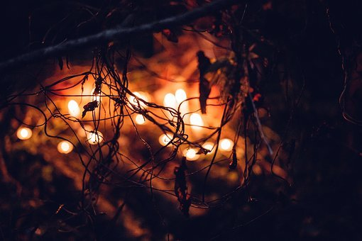 Nature, Autumn, Blur, Blurred, Candle, Candles