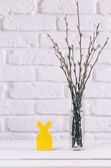 Blossom, Bouquet, Branch, Brick, Bricks, Bunny, Cloth