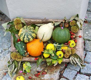 Autumn Scenery, Töktermés, Colorful Pumpkins