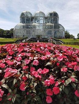 Botanical Garden, Curitiba, Paraná, Flowers, Greenhouse