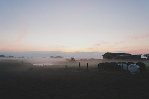 Nature, Country, Countryside, Dusk, Evening, Fog, Foggy