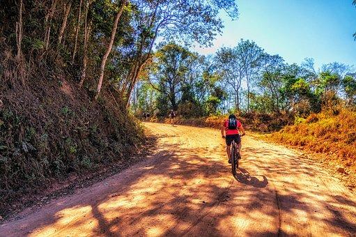 Road, Path, Interior, Cycling, Bike, Mountain Biking