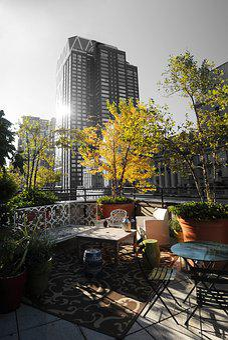 New York, Hotel, Garden, Black And White, Skyscraper