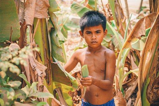 Asia, Asian, Boy, Cambodia, Cambodian, Child, Crops