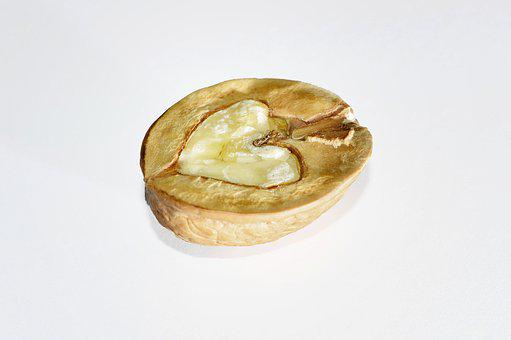 Nut, Walnut, Nuts, Fruit Bowl, Brown, Food, Shell