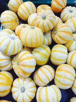 Halloween, Pumpkin, Small