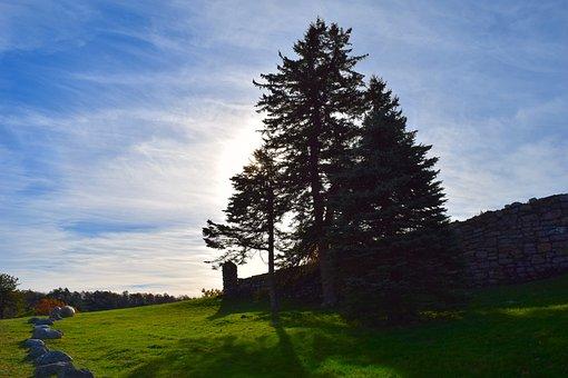 Landscape, Trees, Sun, Stones, Wall, Shadow, Sky, Blue