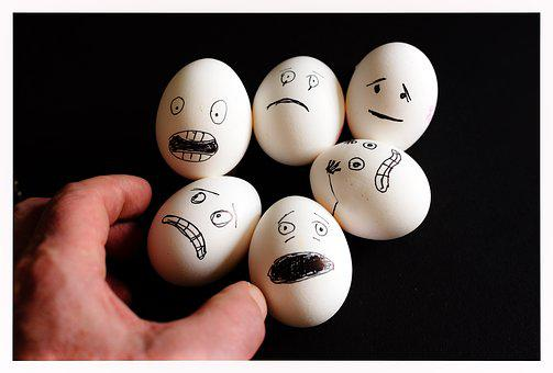 Scared Eggs, Egg, Food, Nutrition, Eat, Chicken Eggs