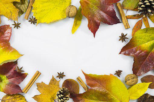 Christmas Time, Advent, Weinachtlich, Autumn, Leaves