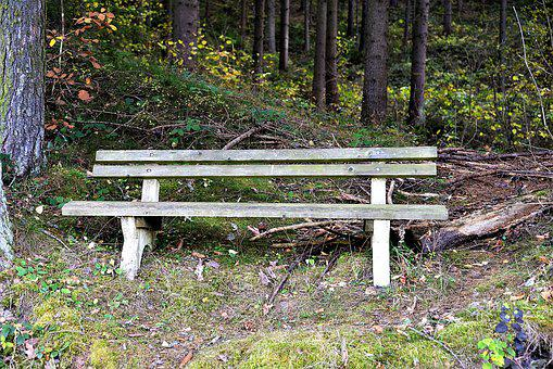 Bank, Rest, Forest, Resting Place, Autumn, Wooden Bench