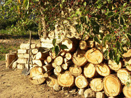 Trunks, Lena, Wood Cut, Bark, Farm, Cabin