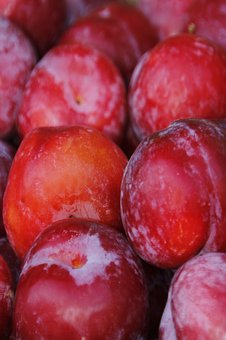 Fruit, Plums, Red Plums, Harvest, Vitamins, Delicious