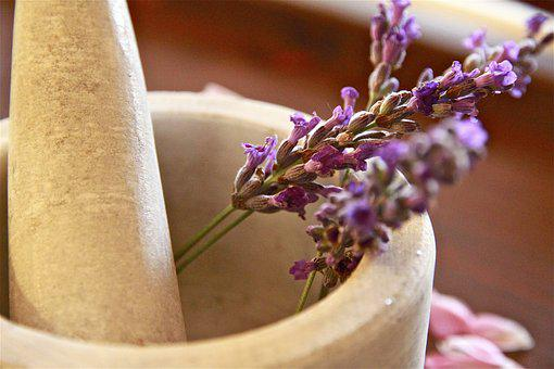 Herbal Tea, Pesto, Violet, Lavender, Flowers, Nature