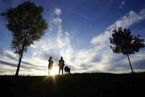 Back Light, Sky, Clouds, Sun, Landscape, Tree, Mystical