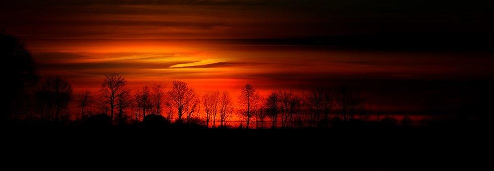 Tree, Series, Sun, Orange, Sunset, Abendstimmung