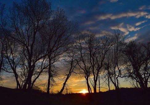 Sunrise, Silhouette, Trees, Sky, Clouds, Sun, Blue