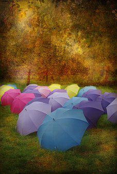 Ilminster, Somerset, Uk Umbrellas, Colour, Colourful