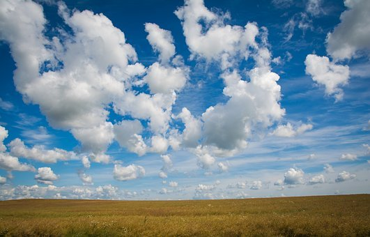 Field, Clouds, Wheat, Sky, Nature, Summer, Landscape