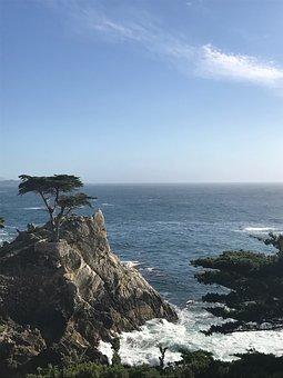 California, Carmel, Ocean, Beach, Travel, Sea, Usa