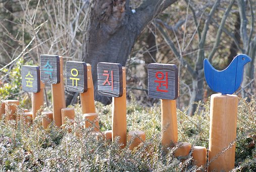 Sky Forest Kindergarten, Yeongjongdo, The Picture Park