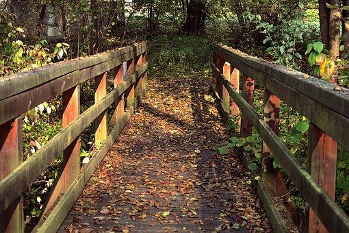 Railings, Bridge, Wooden, Park, Old, Autumn, Beams