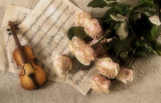 Violin, Music, Instrument, Classic, Musical Instrument