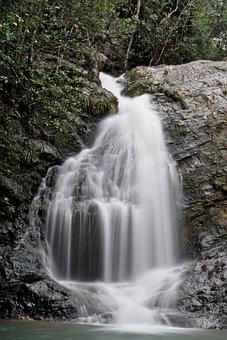 Waterfalls, Flow, Water, Nature, Stream, Flowing, Rock