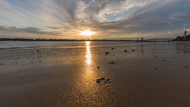 Elbe, Beach, Hamburg, Elbe Beach, Wadden Sea, Water