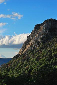 Granite, Mountain, Pending, Pine, Landscape, Nature