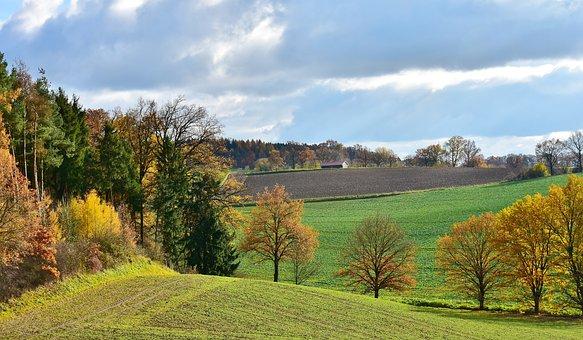 Landscape, Tree, Sunlight, Nature, Romantic, Rest