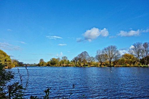 River, Water, Waterway, Stream, River Bank, Landscape