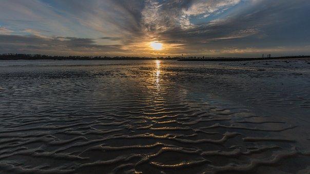 Elbe, Beach, Hamburg, Elbe Beach, Wadden Sea, Water