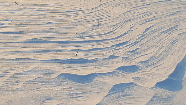 Winter, Snow, Dune, Wind, Wintry, Mood, Snow Tracks