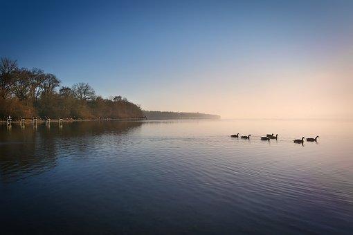 Ammersee, Fog, Ducks, Bank, Abendstimmung, Bavaria