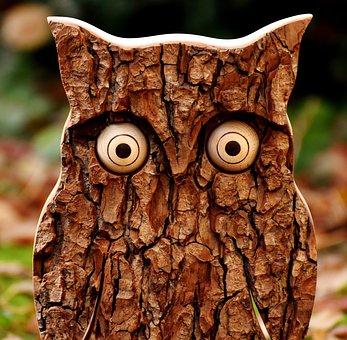 Owl, Tree Bark, Animal, Autumn, Fall Leaves, Eagle Owl