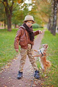 Boy, Dog, Pug, Small Dog, Each, Animal, Puppy, Pets