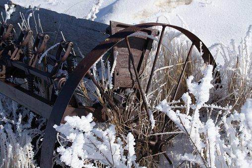 Wheel, Frost, Planter, Antique