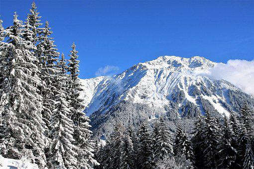 Sky, Blue, Snow-covered Trees, Mountains, Fresh Snow