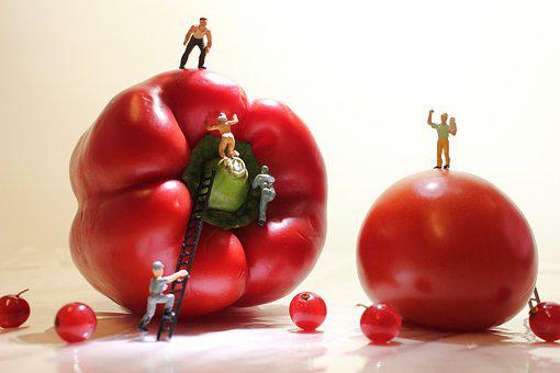 Paprika, Tomato, Miniature Figures, Currant, Food, Eat