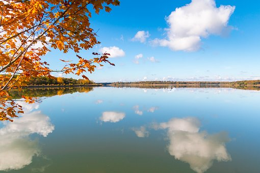 Fall Leaves, Tree, Water, Mirroring, Cloud, Autumn