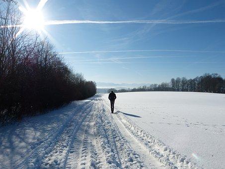Snow, Landscape, Winter, Cold, Nature, Out, Traces